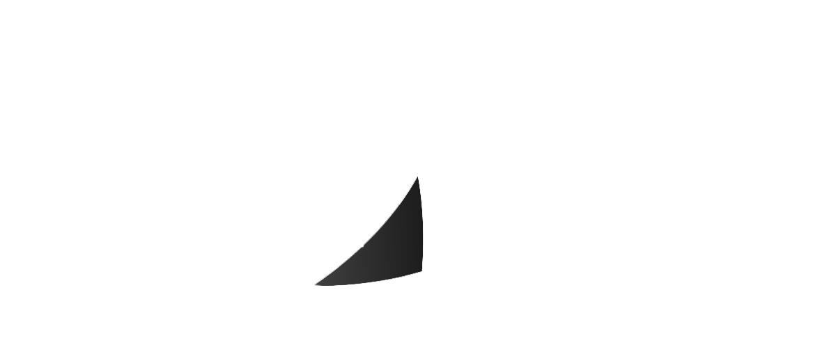 ff voile logo