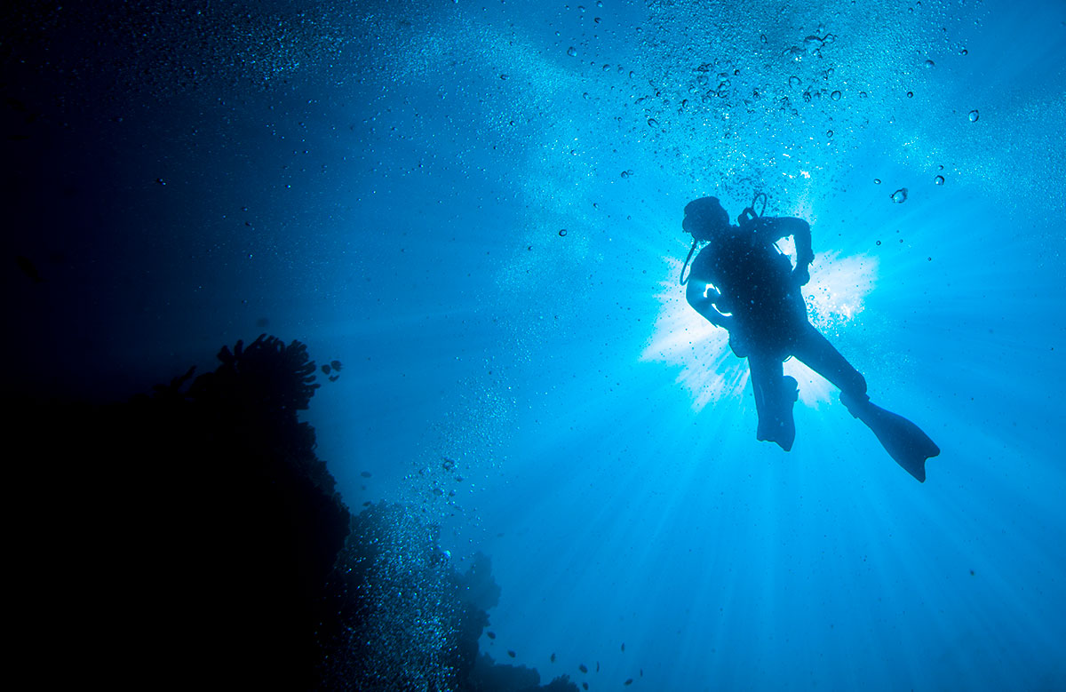 Plongée dans la mer